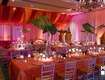 Terri Bergman Events