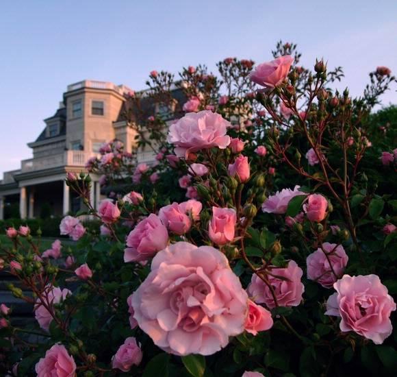 The 10 Best Wedding Venues In Newport Ri: Newport RI Event, Meeting