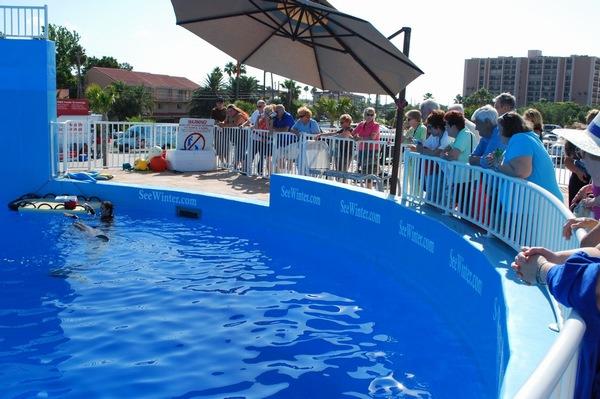 Alf Img Showing Floor Plan Of Clearwater Aquarium